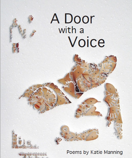 A Door with a Voice - Cover